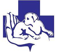 Ветеринарная помощь, Ветеринарный врач, Кастрация, Стерилизация