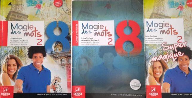 Manual+ caderno de atividades+bloco de francês 8 ano