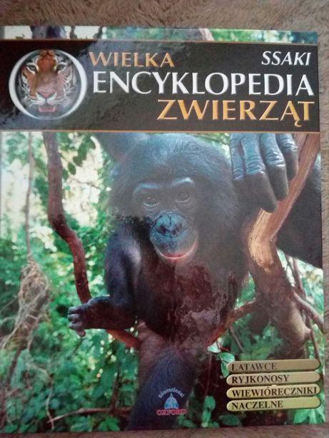 Wielka Encyklopedia Zwierząt. Ssaki t. 2