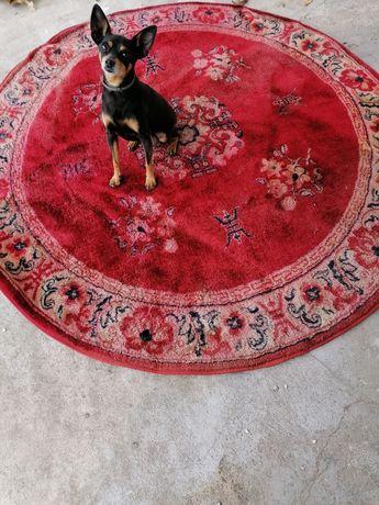 Carpete redonda avermelhada