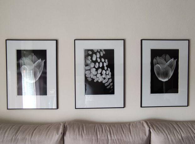 Set de 3 quadros a preto e branco