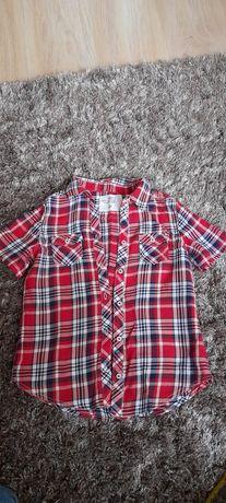 Koszula h&m r 104 krótki rękaw kratka cienka