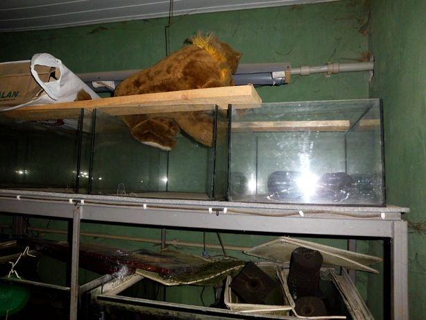 Продам аквариумы для рыбок улиток черепах и развода рыбок.