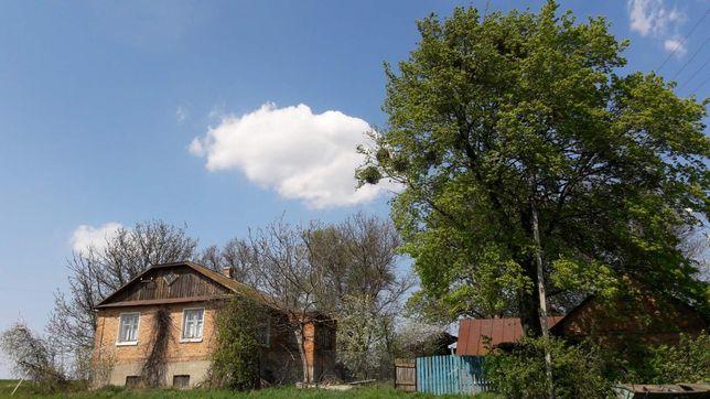 Продам будинок в с. Сільце