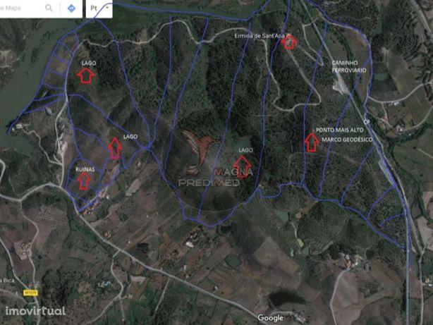 Herdade com 80 hectares com projecto multiusos