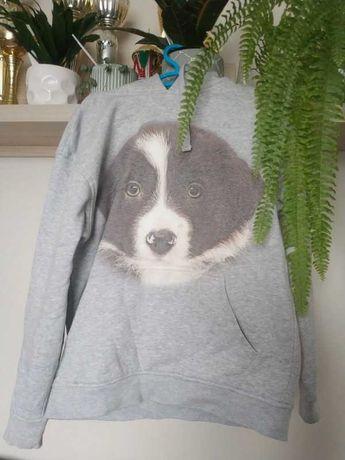 Tulzo bluza damska szara psem pies border collie dla miłośników psów S