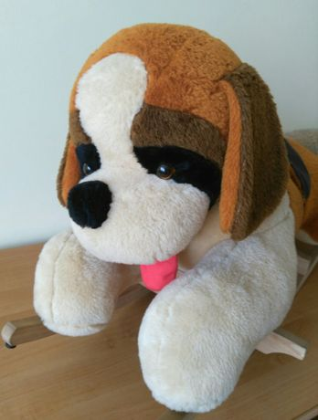 Pies na biegunach - bujak
