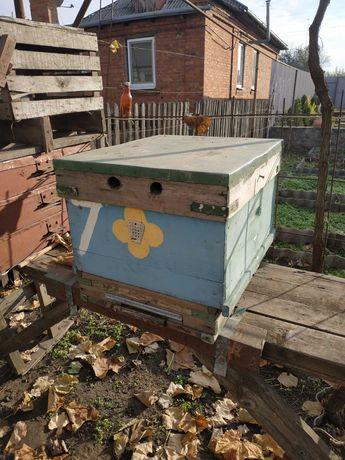 Для пчел улей Рута