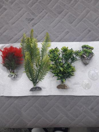 Rośliny  do akwarium    - sztuczne-