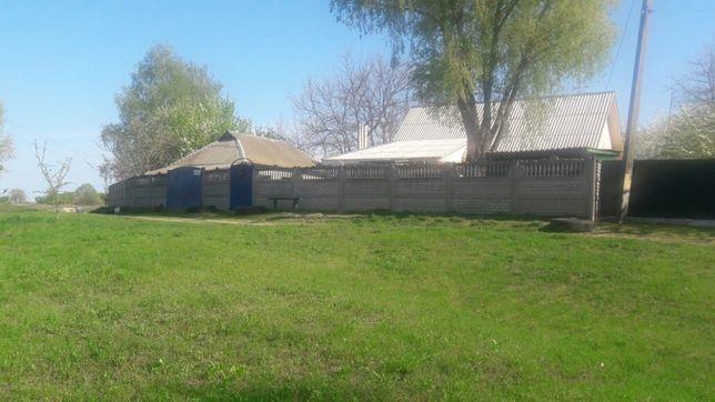 Продам дом в п.г.т М-Коцюбинское