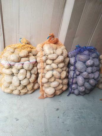 Ziemniaki jadalne bellarosa denar lord melody