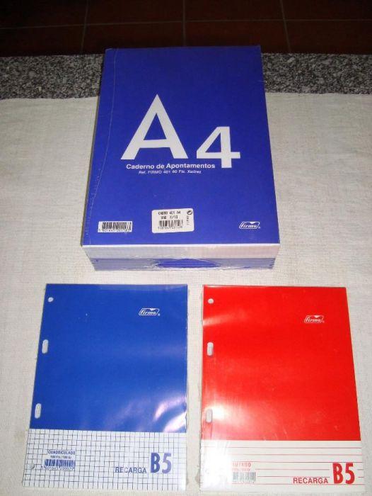Cadernos Recarga A4 Firmo 80 folhas  liso Viseu - imagem 1