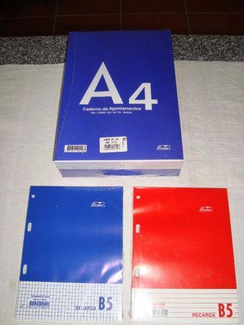 Cadernos Recarga A4 Firmo 80 folhas  liso
