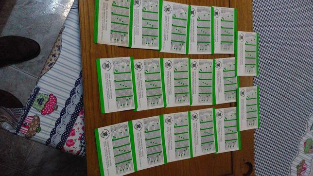 Colecao 17 calendarios bolso concelho valongo