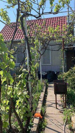 СРОЧНО продам участок с садовым домиком в Совиньоне -1