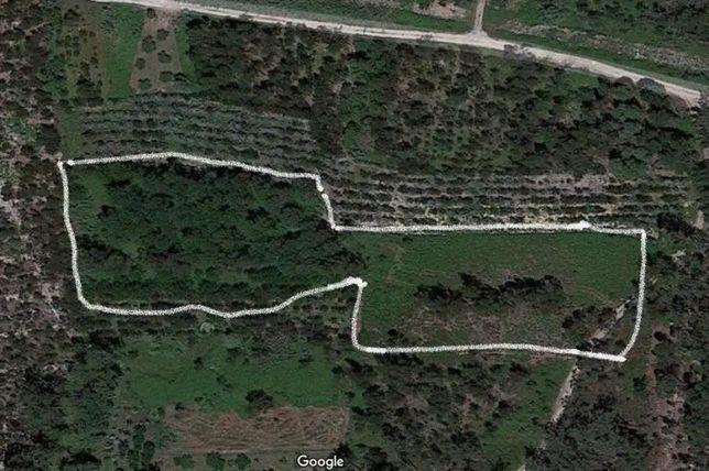 Terreno para venda na zona da Bairrada