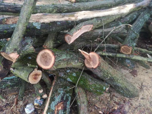 Drewno do pieca. dowoz Oleśnica , Sycow i okolice