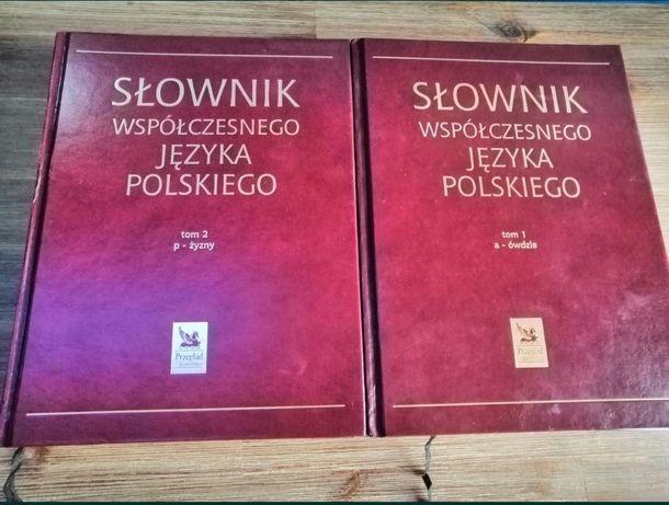 Słownik współczesnego języka polskiego 2 tomy