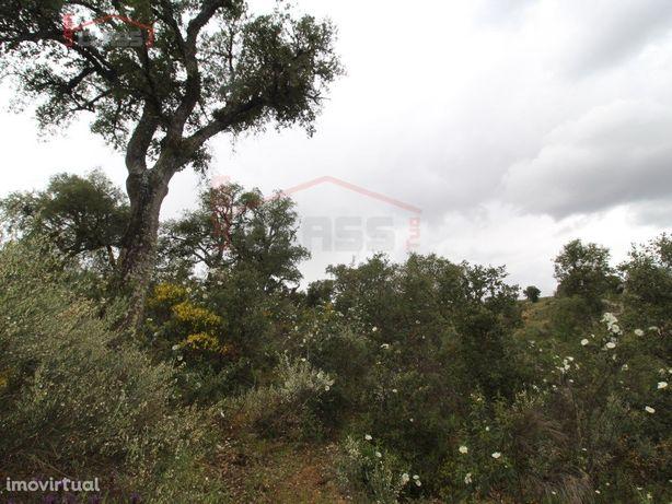 2 Terrenos rústicos com sobreiros