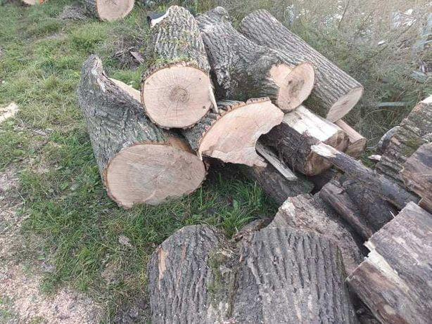 Drewno dębowe opałowe