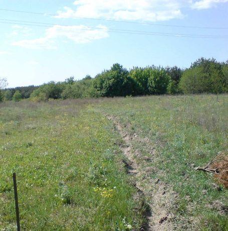 Земельна ділянка смт.Тучин