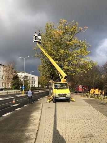 Wycinka drzew Radzymin Wolomin Wyszków podnosnik koszowy wynajem