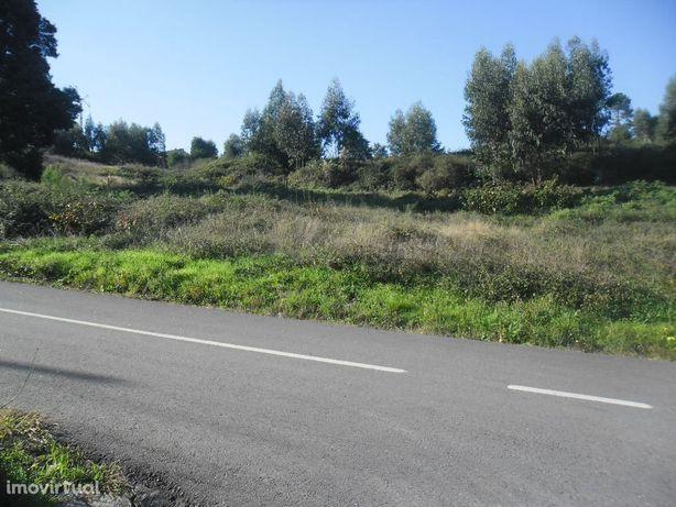 Terreno para Construção - Amarante ( Figueiró)