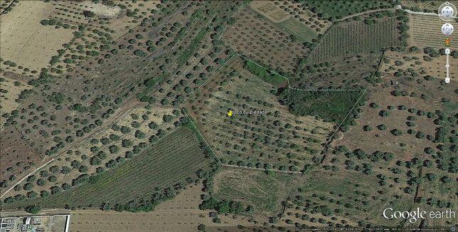 Vende-se terreno agrícola e casa para arrumos