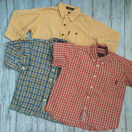 Комплект рубашек H&M из натурального хлопка на мальчика ростом 98-104