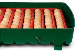 Automatyczny INKUBATOR na 49 sztuk kurzych jaj- COVINA SUPER