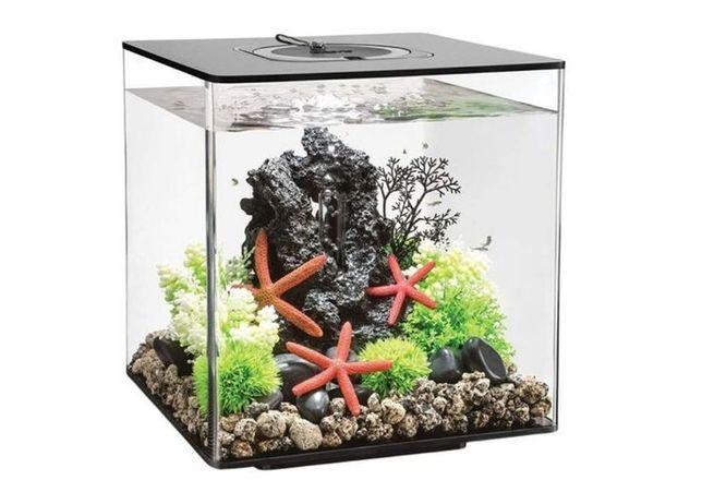 Aquario Cube 30 Led Preto