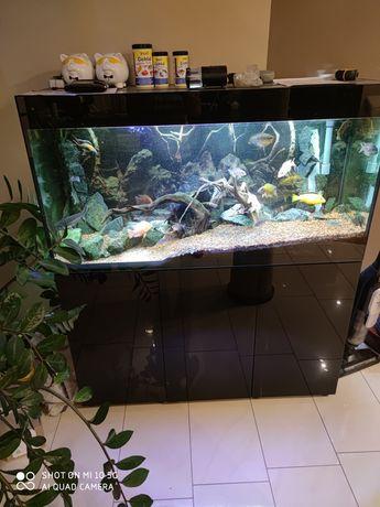 Akwarium glossy 260 czarne komplet