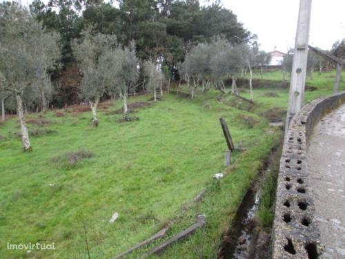 Moradia T3 Venda em Alvarenga,Arouca