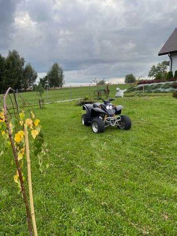 Quad Honda Barossa SMC 170