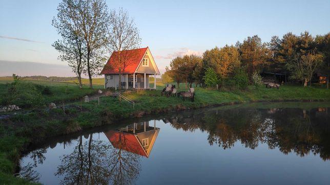 Agroturystyka Ugoszczanka, domek na wsi
