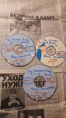 Диски фильм Тело человека DVD The Human Body биология