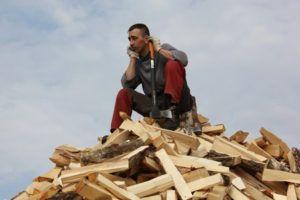 Купить дрова дубовые, акации колотые сухие Киев обл