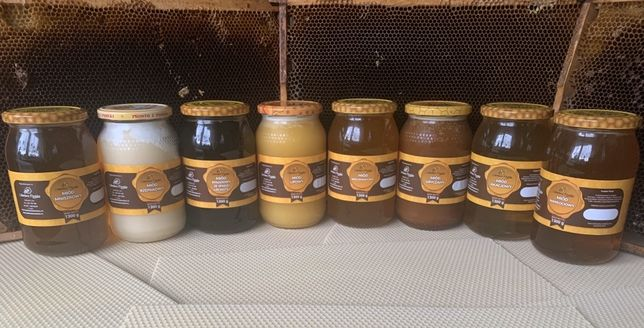 Miód rzepakowy,wielokwiatowy,mniszkowy,akacjowy,lipowy,pyłek pszczeli