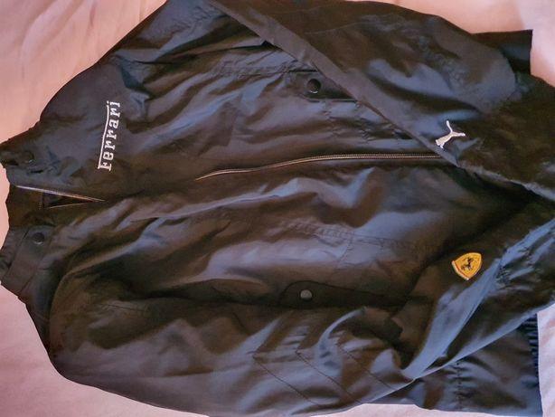 Kurtka Puma Scuderia Ferrari nowa Logo