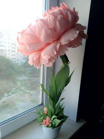 Ростовые цветочки