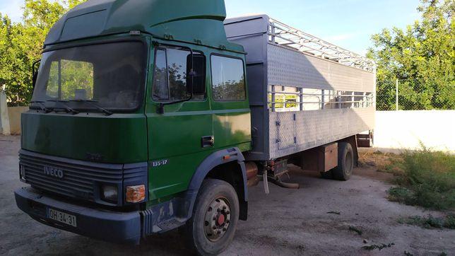 Camião transporte animais vivos