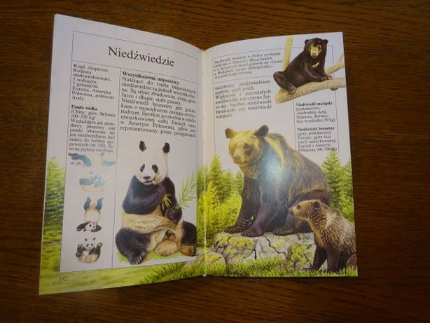 Mała księga zwierząt