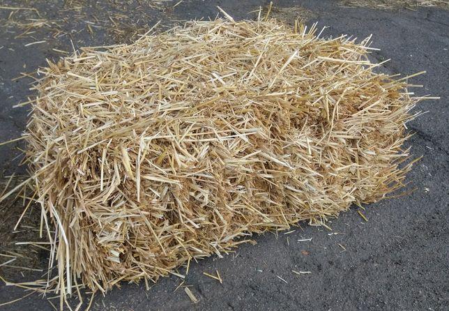 Пшеничная солома в тюках.