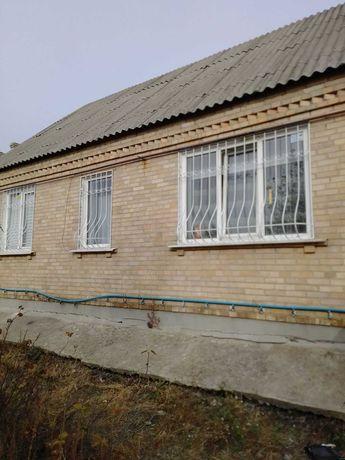 Металические Решотки з елементами  з  холодной ковки на окна