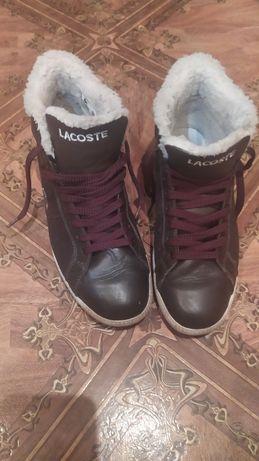 Мужские ботинки Lacoste