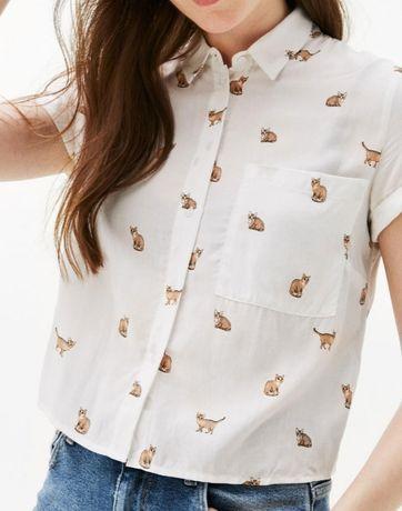 Летняя рубашка с кошечками  Bershka