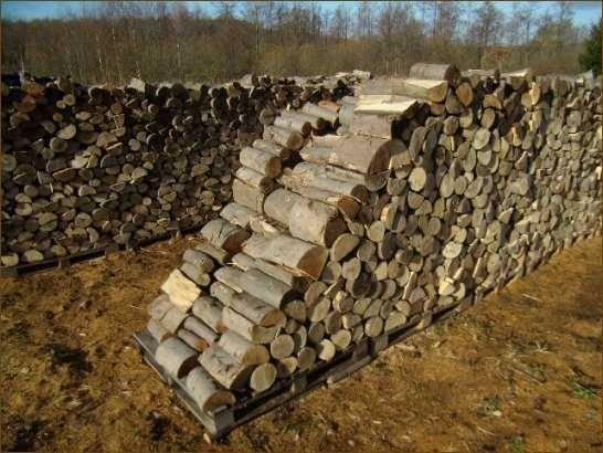 Drewno kominkowe-sezonowane, wysokokaloryczne,