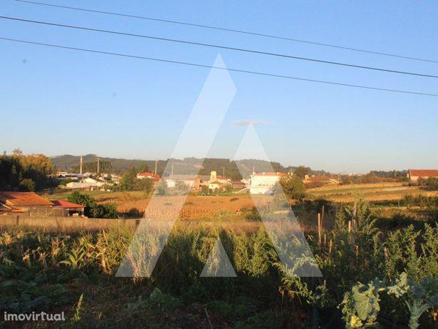 Lotes de terreno em Albergaria-a-Nova