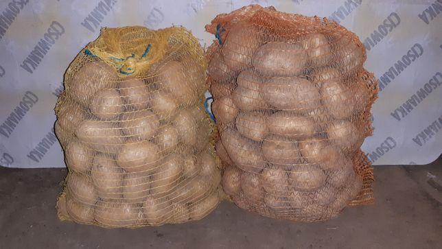 Ziemniaki jadalne, drobne, cebula żółta i czerwona oraz inne warzywa