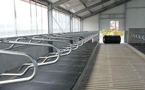 Maty gumowe legowiskowe dla bydła-alternatywa dla słomy-mata DB 1.3